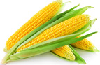 Resistant Starches: How Eating Carbs Can Help you Slim Down