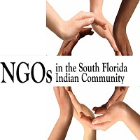 NGOS IN THE SOU ARTICLE 12 1