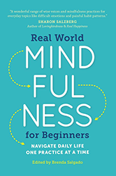 Real World Mindfulness for Beginners: Navigate Daily Life One Practice at a Time
