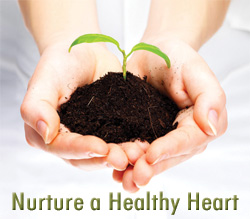 Nurture a Healthy Heart