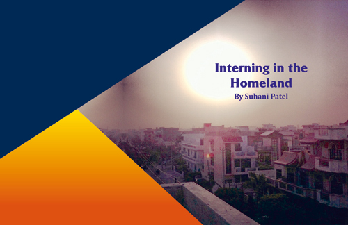 Interning in the Homeland