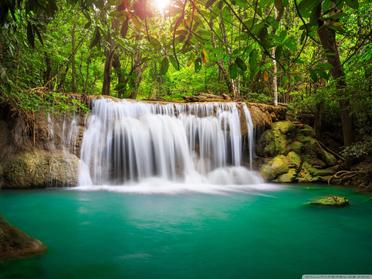 Rainforest waterfall Wallpaper