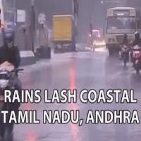Rainvardah12121