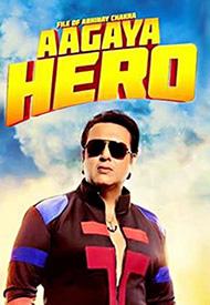 Aa Gayaa Hero dismal box office performance