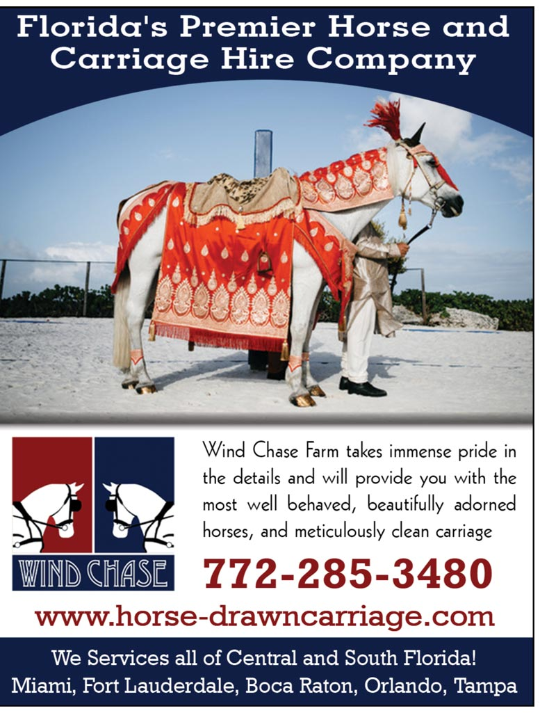 Wind Chase Farm