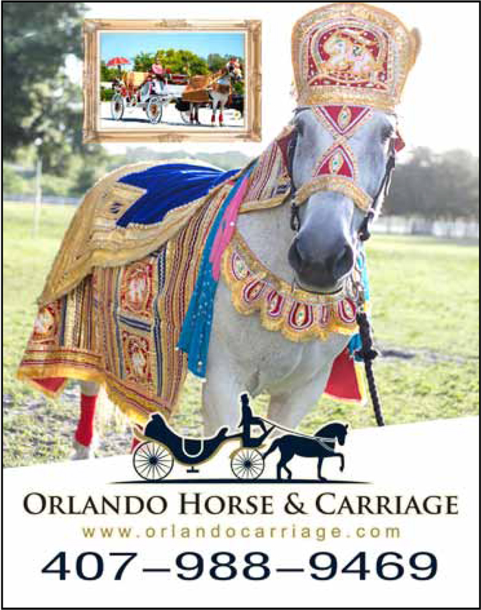 Orlando Horse & Carriage