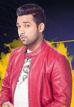 Puneesh Sharma named as new captain in Big Boss 11