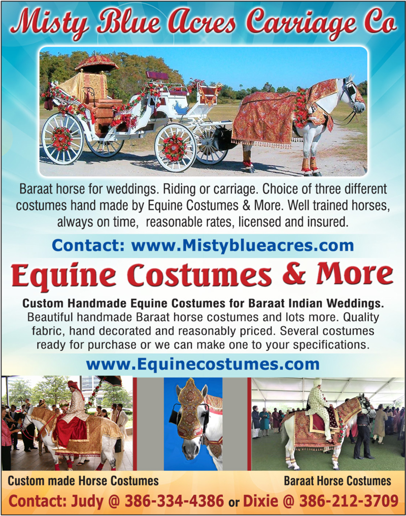 Equine Costumes & More