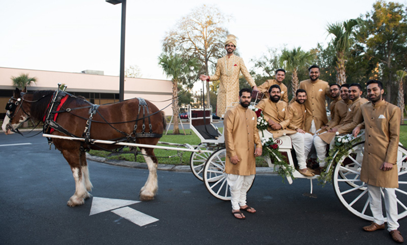 Indina Groom with Indian Groomsmen on Horse Carriage
