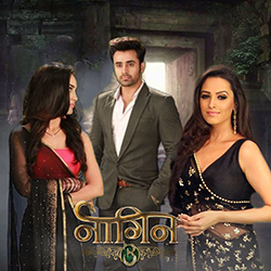 Color TV's Naagin 3 Might Go Off Air Soon