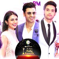The Indian Telly Awards 2019 2 1