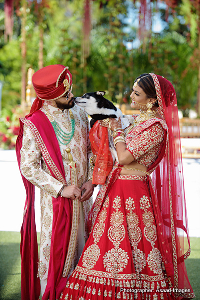Indian Bride and Groom with Pet Dog Picture