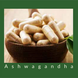 Ashwagandha: Is It For You?