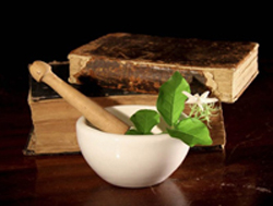 When people think of Ayurveda, one of the first herbs that comes to mind is Ashwagandha