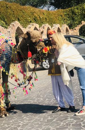 Camel Ride at Jaipur