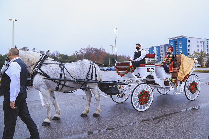Horse carriage by Orlando Horse & Carriage